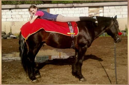 [img]http://horsesclub.ucoz.ru/_ph/13/2/214118067.jpg[/img]